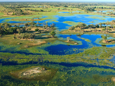 Okavango Delta Bostwana Real World Eden