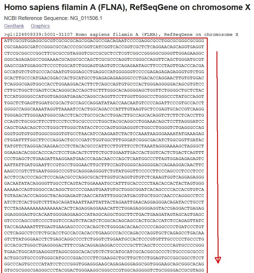 Tek boyutlu dizinin kabarcık sıralaması: algoritma, C dilinde program kodu