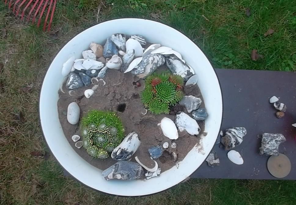 Favorit Tolle Deko Ideen für Muscheln und Sand aus dem Reiseland - Wohnen RU08