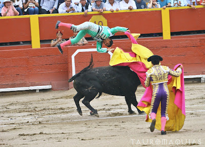 cogida toro banderillero darwin salazar tachuela acho 2019 corrida toros torero
