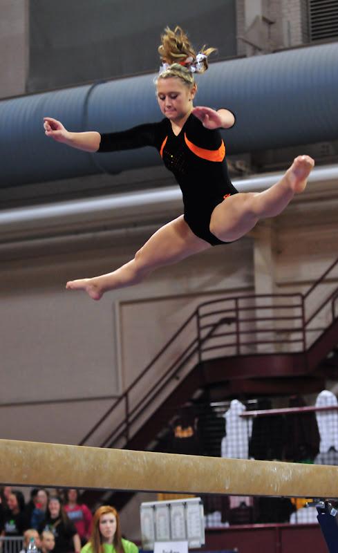 minnesota high school gymnastics state meet results