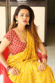 Geetha Shah Looks In Saree 20