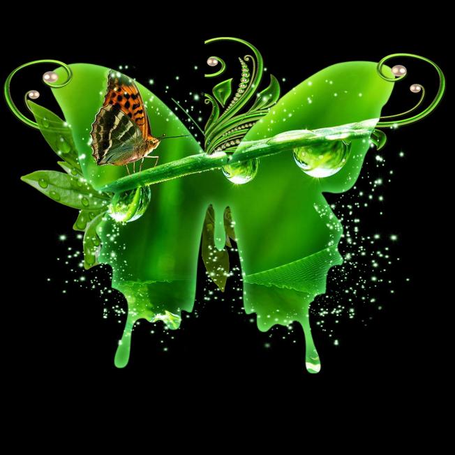 Uskrzydlone Wiersze Być Motylem