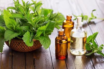 Remède noix de coco, menthe et cannelle pour stimuler les cheveux