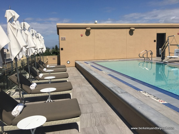 roof-top pool at The Clement Hotel in Palo Alto, California