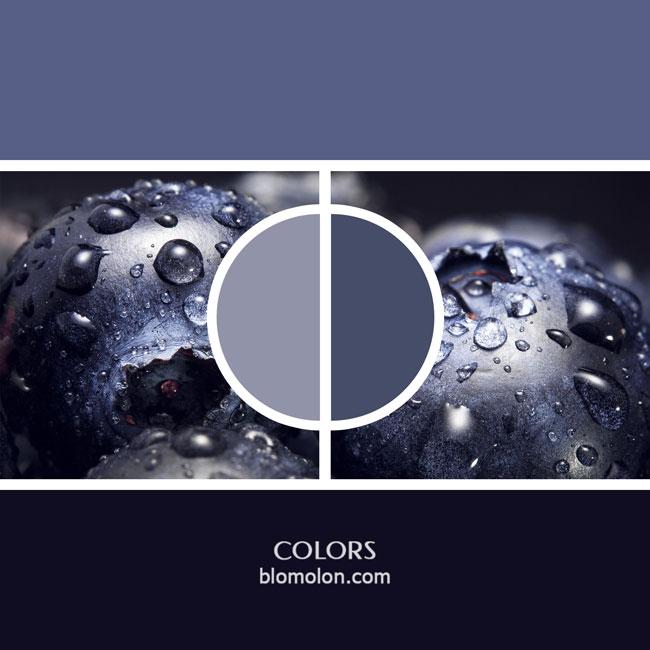 variedad_en_color_color_11