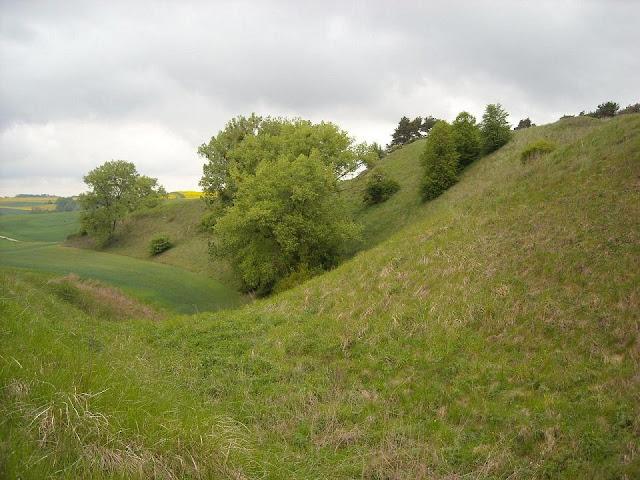 Wczesnośredniowieczne grodzisko w Świeciu nad Osą