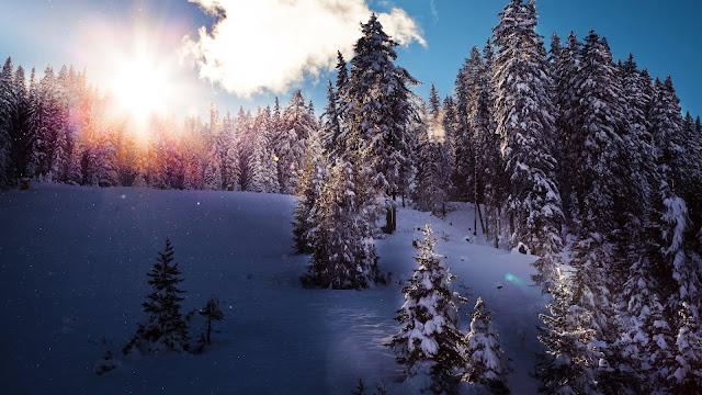 Free Beautiful HD Nature Wallpaper 1080p