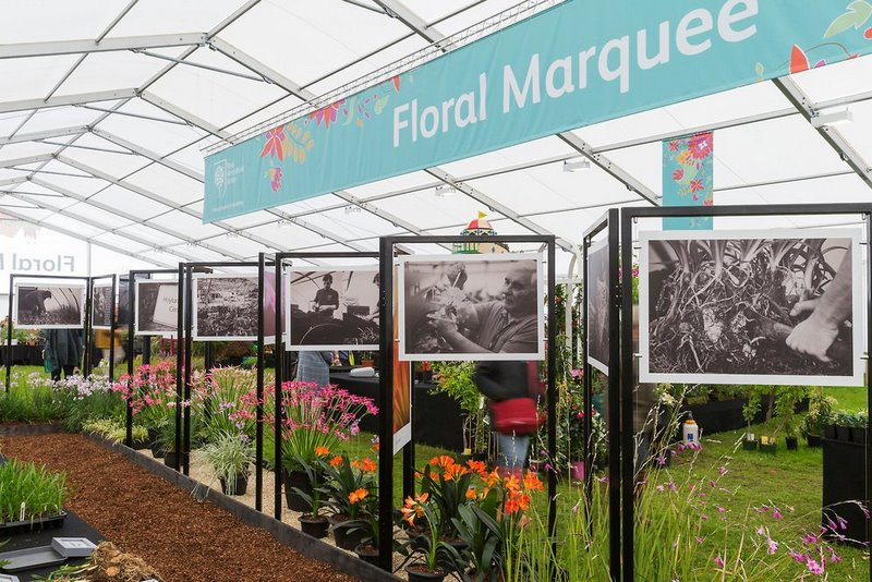 Devonshire  Floral Marquee. Chatsworth Flower Show 2017