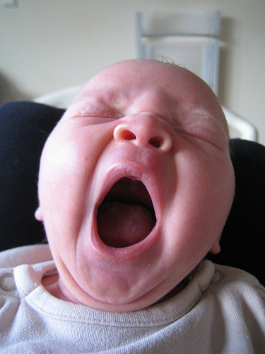 You Yawn Because You Need Oxygen? – No, says researchers.