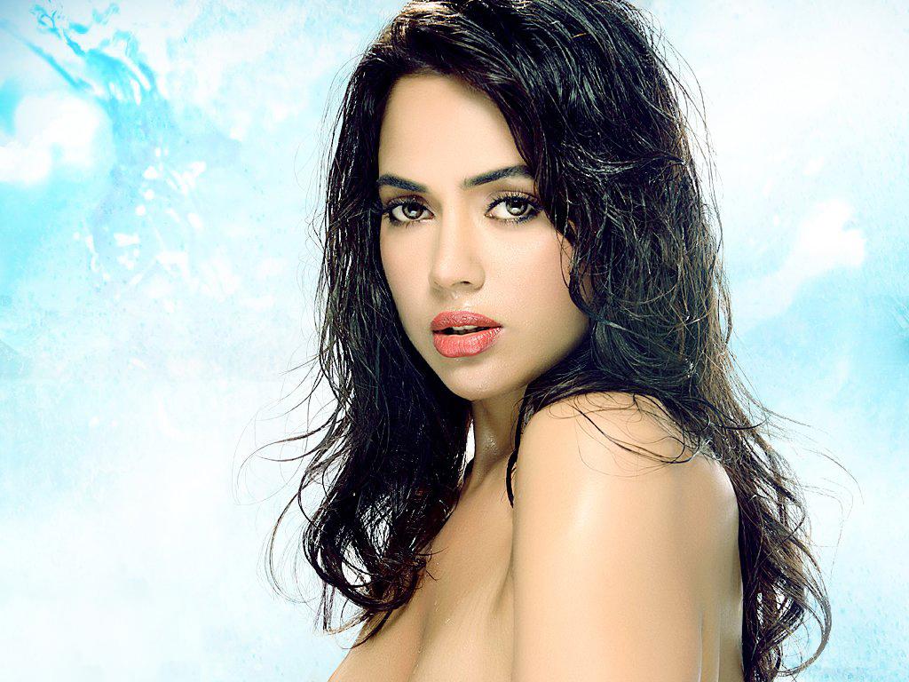 Bollywood celebrity sameera reddy hd wallpapers free neo - Free wallpaper celebs ...