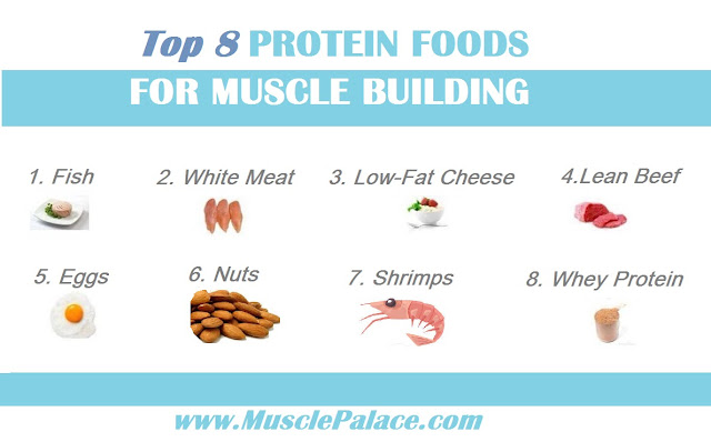 Foods Highest in Protein