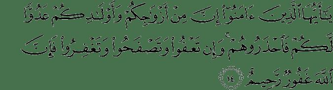 Surat At-Taghabun Ayat 14