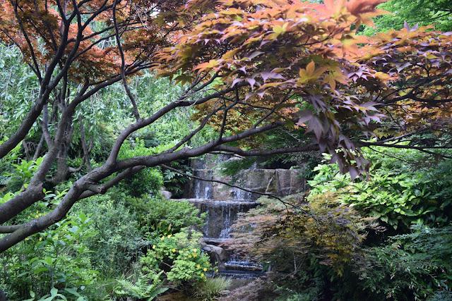 garden the westin tokyo