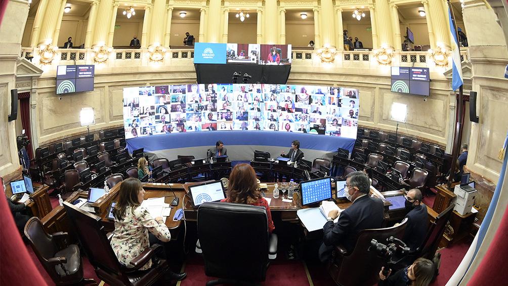 El Senado aprobó veinte decretos del Gobierno en la primera sesión virtual de la historia