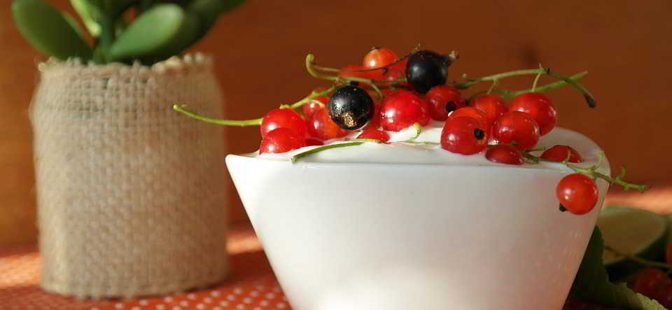 yogurt Cemilan Terbaik Untuk Menurunkan Berat Badan