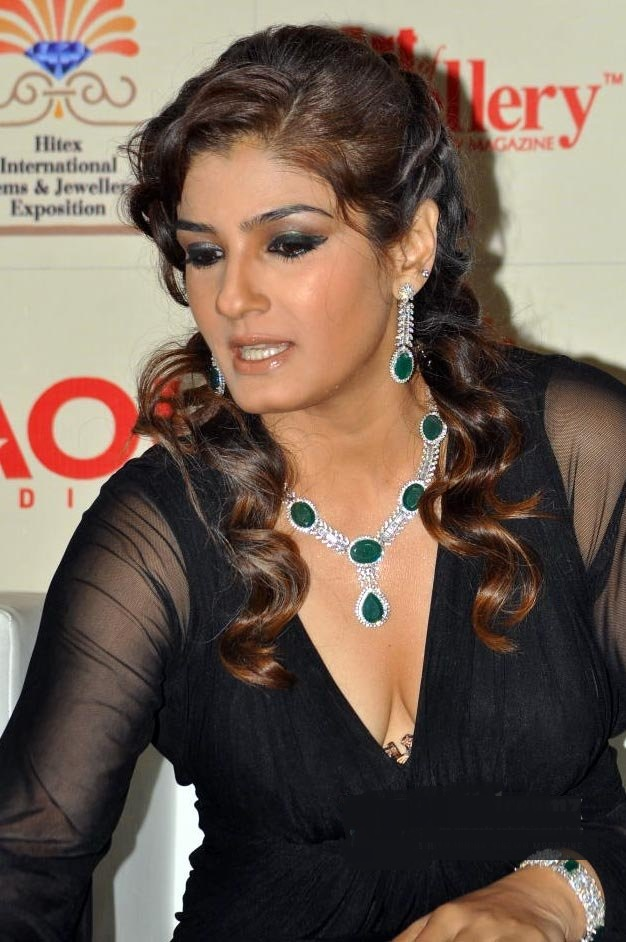 Bollywood Pics Pix4World Raveena Tandon Hot And Sexy Hd -8105