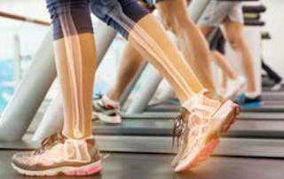 regenerasi sel sel tulang mencegah osteoporosis