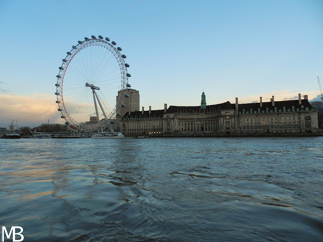 london eye e acquario