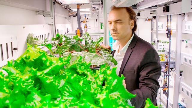 Καλλιεργούν λαχανικά χωρίς χώμα και φως ημέρας στην Ανταρκτική