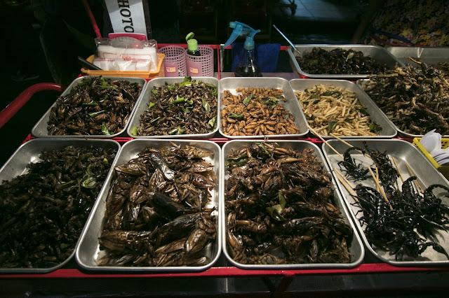 Insetti sulle bancarelle a Kao San Road-Bangkok