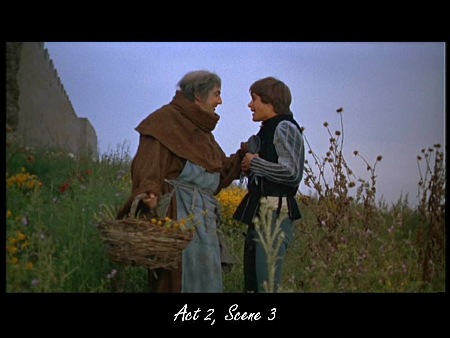 what will do romeo consult friar laurence for you to do