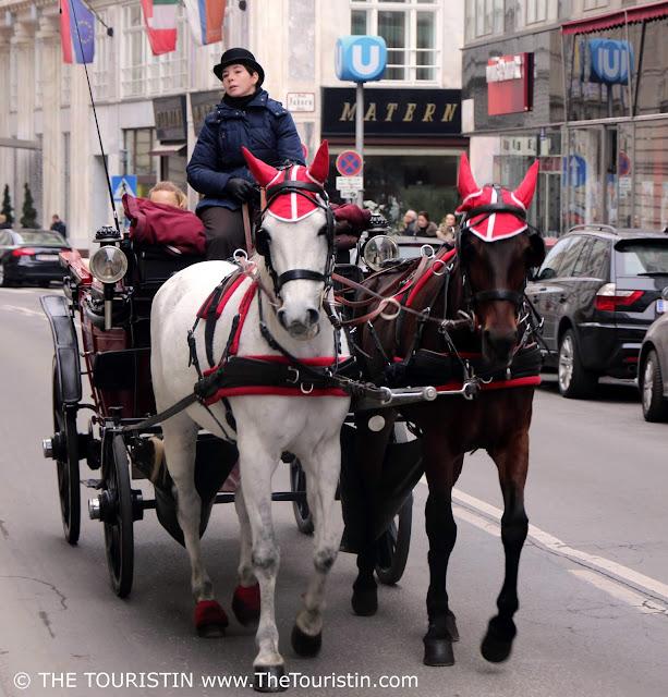 Travel Austria. Vienna. Fiaker. Horses