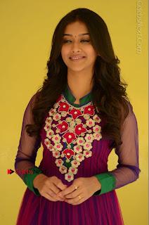 Actress Pooja Jhaveri Latest Stills in Purple Salwar Kameezt at Dwaraka Success Meet  0047.JPG