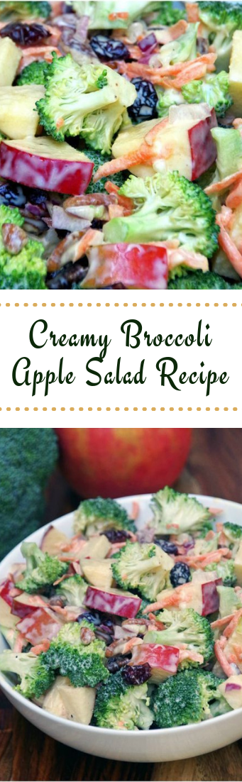 Creamy Broccoli Apple Salad Recipe #vegetarian #saladrecipe