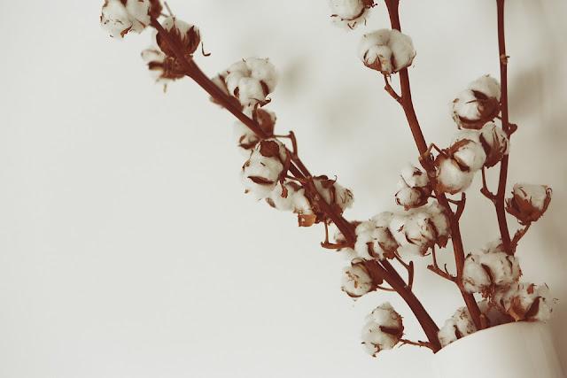 biancheria di cotone