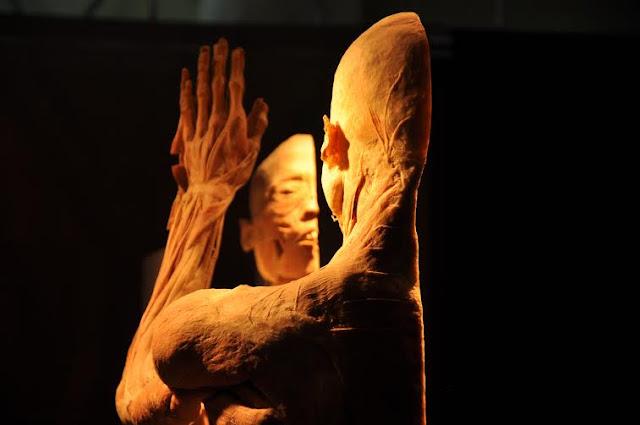 O Fantástico Corpo Humano no RioMar Recife