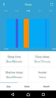 FourFit Health Band Review on Us Two Plus You - Graph of sleep rate over a day
