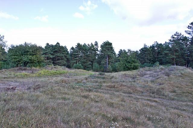 Secret Bunker Of The Bialoweza Forest