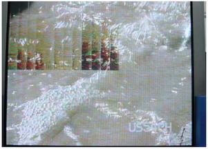 Trama  grisácea con barras difusas en TV PLASMA.