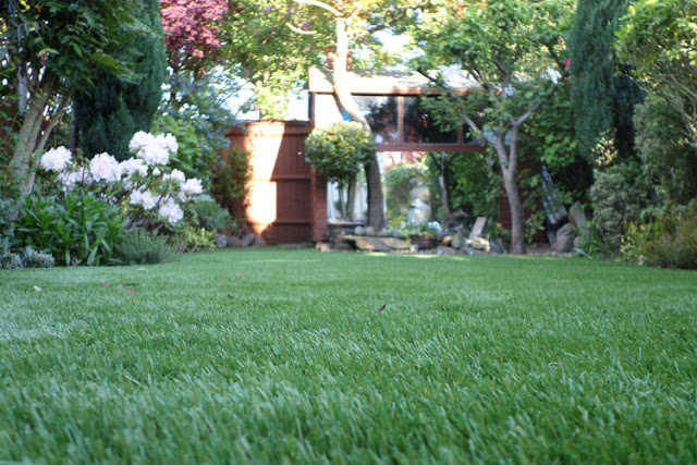 Why Should People Think of Installing the Best Artificial Grass in UK?