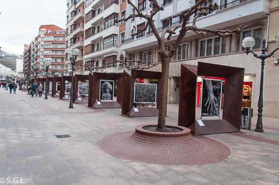 Bilbao calle Ercilla. Genesis de Sebastiao Salgado