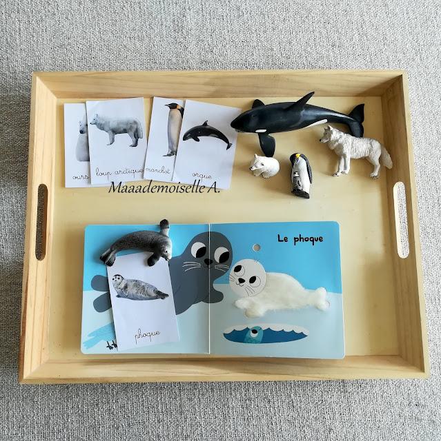 Plateau sensoriel animaux de la banquise, livre, cartes de nomenclature et figurines
