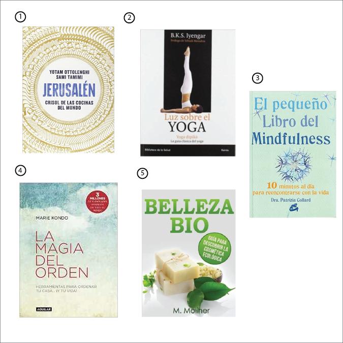 Libros recomendados Sant Jordi