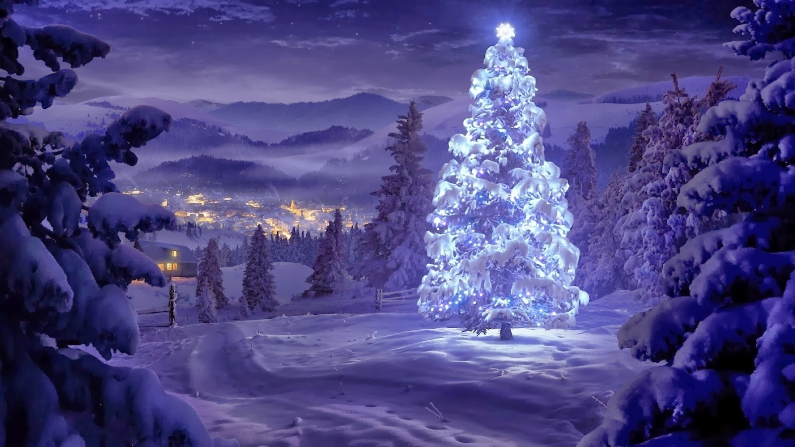 200+ Latest Concepts Of Christmas Tree : Very Hight