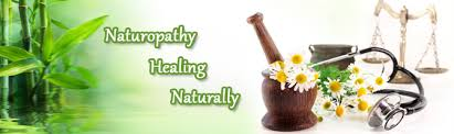 Naturopathic Allergy Testing - Old Problem, New Approach