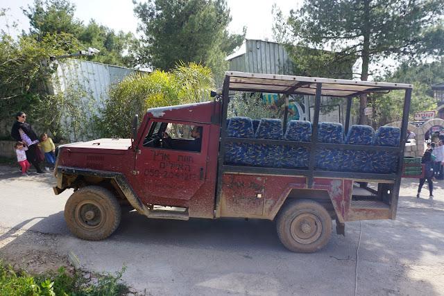 טיול ברכב ספארי -חוות האיילים