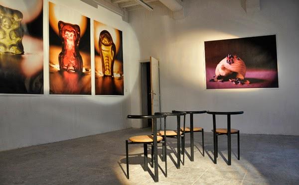 """Photographies Alain Perez - Exposition """"être et ne pas être"""" 29 nov. 2013"""