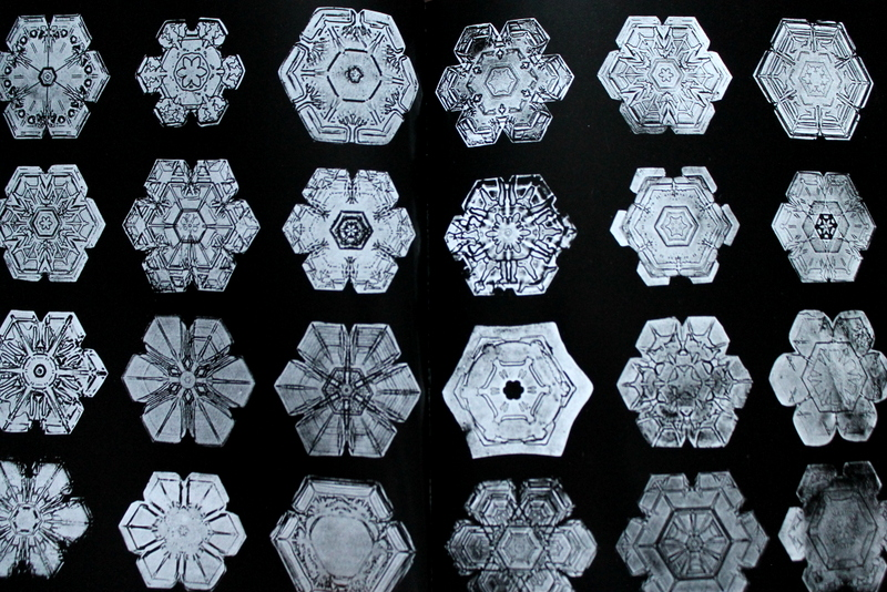 teaching bentley unit book and activities easy snowflake on pin less