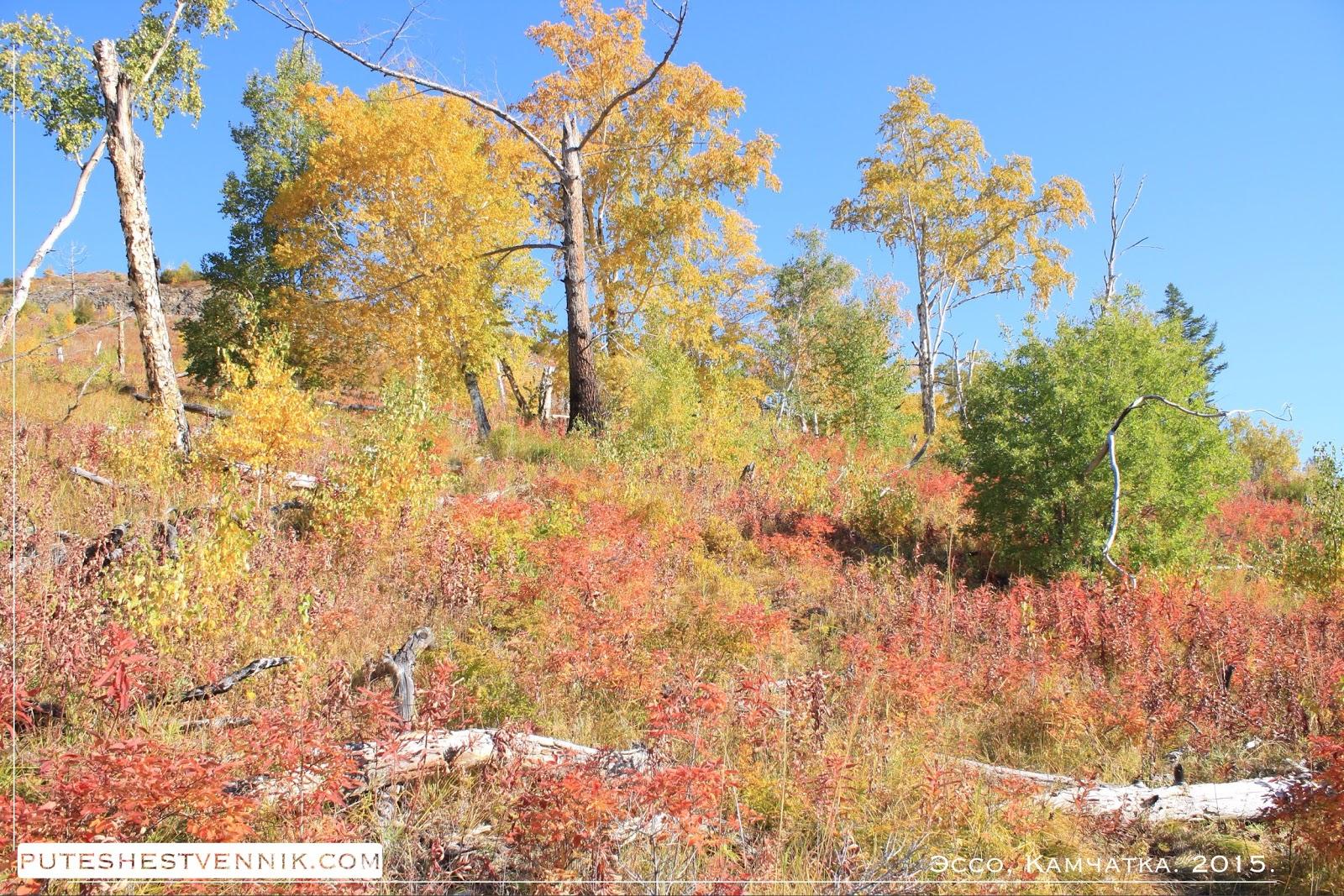 Осенняя Камчатка