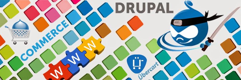 Drupal Developers India
