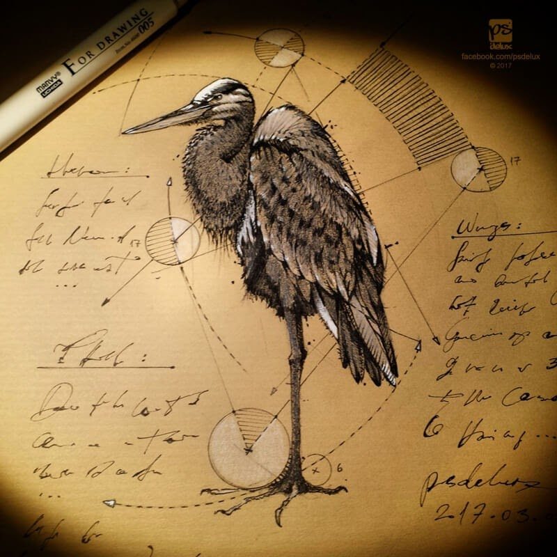 13-Heron-psdelux-Geometric-Animal-Sketches-and-1-Alien-www-designstack-co
