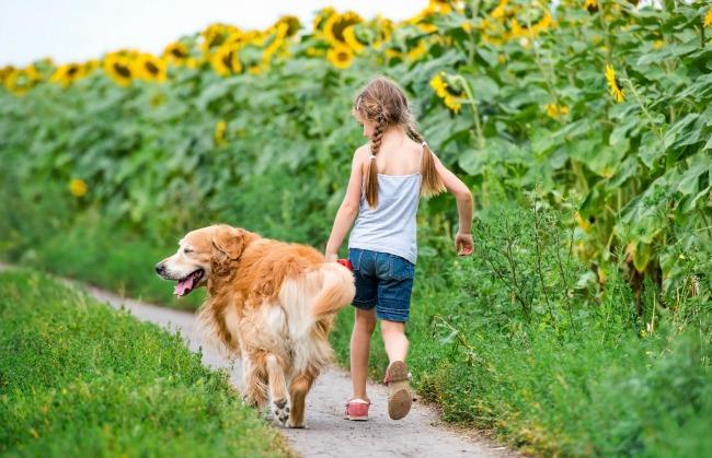 Jak przygotować dziecko do posiadania psa?
