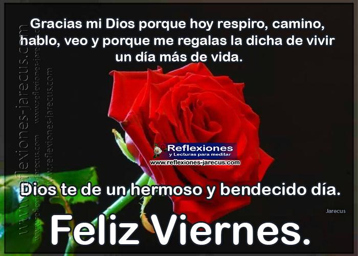 Feliz viernes, gracias mi Dios porque hoy respiro, camino, hablo, veo y porque me regalas la dicha de vivir un día más de vida.