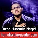 http://www.humaliwalayazadar.com/2018/02/syed-raza-hussain-naqvi-marsiya-2018.html