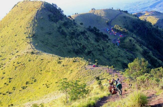 Pesona Keindahan Wisata Trekking Gunung Merbabu Di Selo